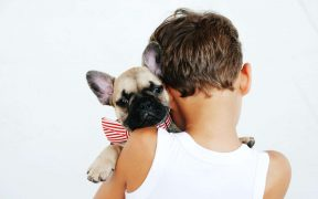 Reasons You Shouldn't Get a Pet Right Now